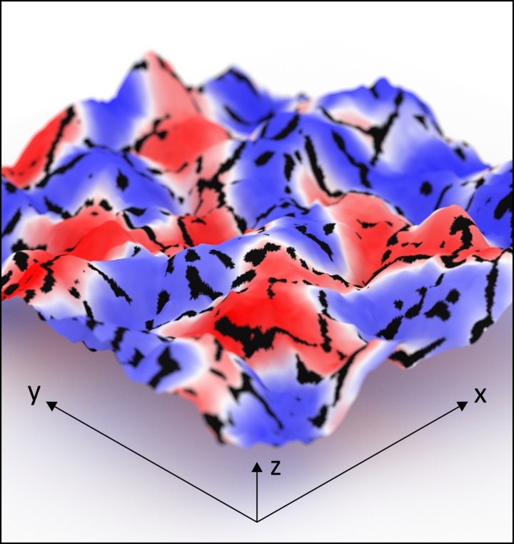 Visualization of the topography of magnesium